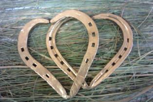 Золотая подкова сердце.