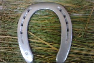 Серебряная подкова, стоявшая на лошади